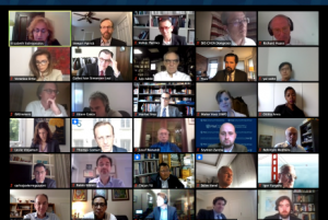 Participants at the CoC virtual conference.